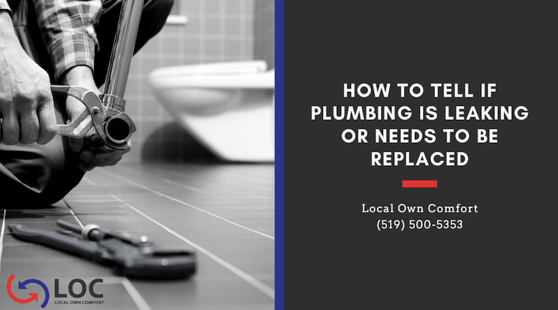 Guelph Plumbing - How to Tell if Plumbing is Leaking or Needs to be Replaced